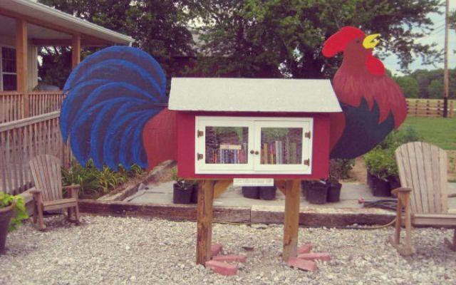 1306520_free-library-tuttacronaca_thumb_big