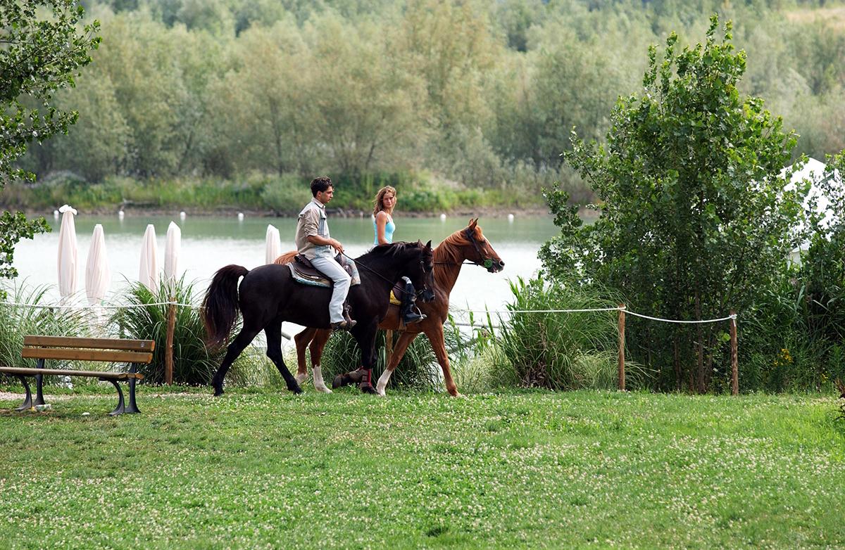 a cavallo lungo l'Arno