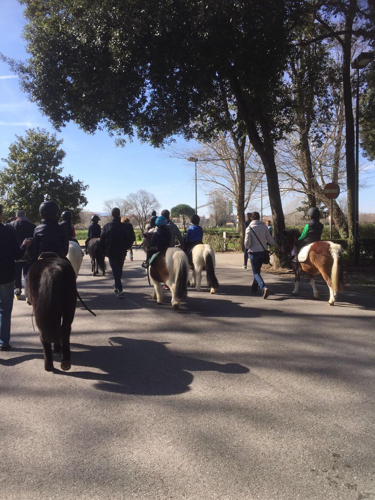 passeggiata lungo l'Arno 2