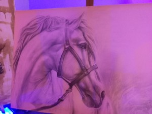 testa cavallo